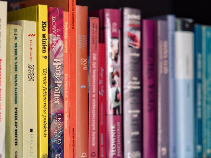 Hayim Oshky - Bookshelf