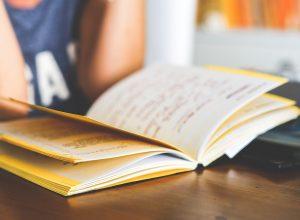 Hayim Oshky - Girl Reading a Book